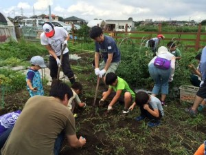 マンション管理組合 コミュニティ菜園