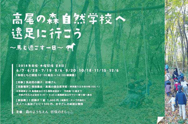 高尾の森自然学校へ遠足に行こう! 馬と過ごす1日