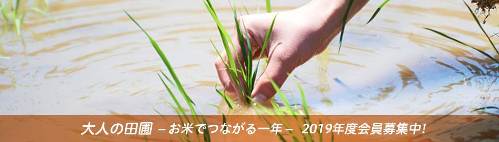 大人の田圃-お米でつながる一年-