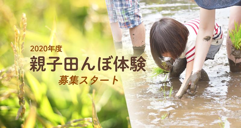 親子田んぼ体験 2020募集スタート!